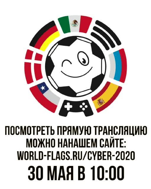 ?World Flags Junior Cup?
